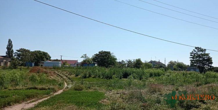 Руководство Коблевской ОТГ отреагировало на замечание жителей Рыбаковки по поводу покоса сорняка (фото)